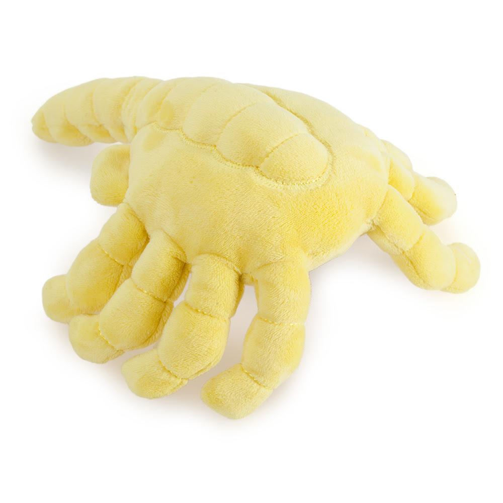 Facehugger Kidrobot Phunny plush toy